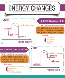 Energy-Changes-Endothermic-Exothemic